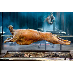 Kůzle (maso 150kč/kg)